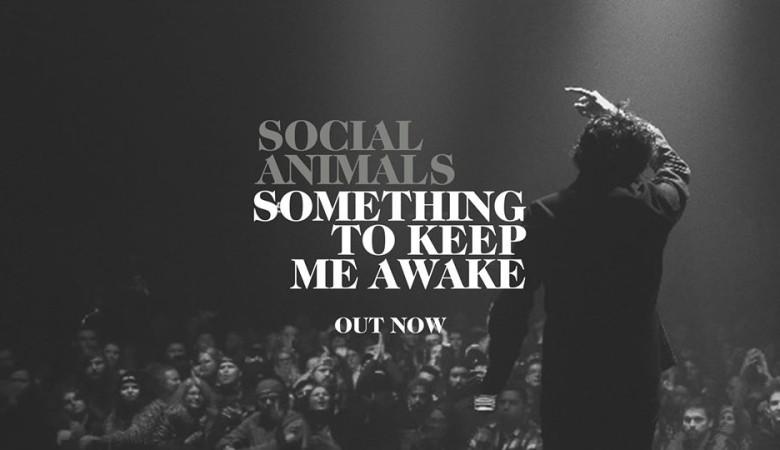Social Animals New Single 'Something to Keep Me Awake'
